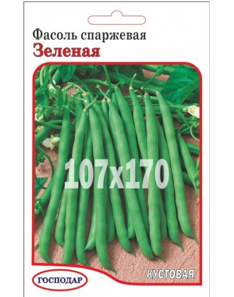Спаржевая Зеленая (Г)