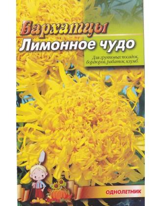 Бархатцы Лимонное чудо