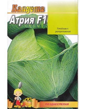 Атрия F1