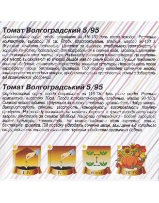 Волгоградский 5/95