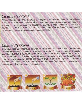 Салат  Рукола