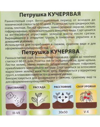 Петрушка Кучерявая